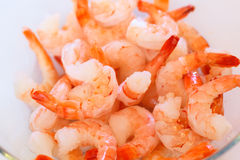 Some prepared shrimps. A lot of prepared tiger shrimps stock image