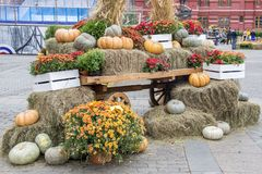 Some pumpkins on hay and ears of wheat in a wooden cart the season of harvest at an autumn festival in Moscow.  royalty free stock photos