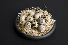 Some quail eggs in a black ceramic bowl. On a black background Stock Photo