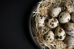 Some quail eggs in a black ceramic bowl. On a black background Stock Photos