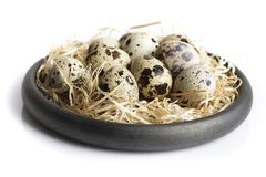 Some quail eggs in a black ceramic bowl. On a white background Royalty Free Stock Image