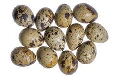Some quail eggs Royalty Free Stock Photos