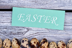 Some quail eggs in a row. Easter themed card. Happy Easter congratulations Stock Photo