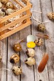 Some quail eggs. On the wooden table background Stock Photos