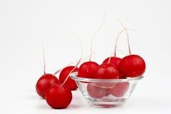Radishes. Some radishes on the white background Stock Photo