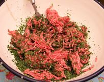 Raw Minced meat. Some raw minced meat of pork and beef Stock Image