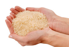 Some raw rice is on female hands. A fistful of white rice, a handful of raw cereal stock photo