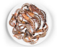Some raw shrimps. With different size. Isolated on white background Royalty Free Stock Images