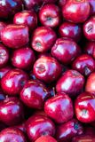 Some red apples. Background of juicy red apples royalty free stock photography