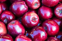 Some red apples. Background of juicy red apples Stock Photo