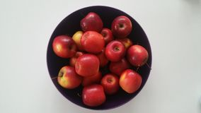 Some red apples  on a white background.APPLES,,,. Some red apples  on a white background Stock Images