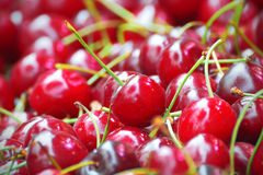 Some red cherries on a table Royalty Free Stock Images