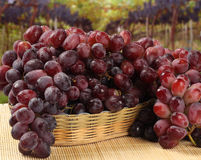 Some red grapes in a wooden pot over a wooden surface. Seen from above Stock Image