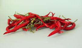Some red, hot pepper. On blue backgorund Royalty Free Stock Photography