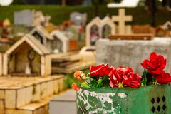 Some red roses inside a dump in a cemetery.