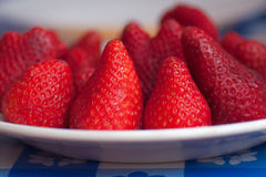 Some red strawberries in a plate. Close up image royalty free stock photo