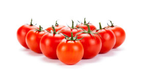 Some red tomatoes on a white background Stock Image