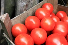 Some red tomatoes in wooden box. Closeup Stock Photography