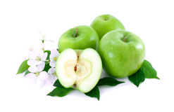 Some ripe apples and white flowers . Some ripe, green apples and white flowers of apple-tree on white background royalty free stock image