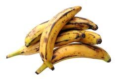 Some ripe banana plantain. On white background stock photography