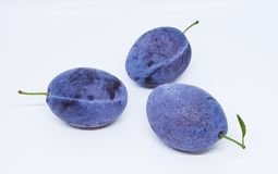 Some ripe delicious plums isolated on a white background. Plums with a touch of blue stock image