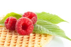 Some ripe delicious raspberries. Some ripe delicious berries on waffle  on white Royalty Free Stock Images