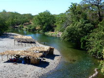 Some River in zanatepec Stock Image