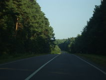 Some road. The road to Lviv with forest Royalty Free Stock Photo