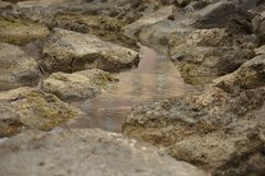 The rocks in the waterlock. Some rocks reflected on the water of the seashore during the day royalty free stock photos