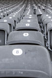 Some rows of gray stadium seats. Shoot from the front royalty free stock image