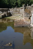 Some of the ruins at the archeological site of Butrint, Albania. With turtles in the water and around the ruins Royalty Free Stock Images
