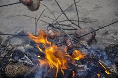 Delicious sausages baked on a campfire in the forest. Some sausages roasted on fire Stock Photography