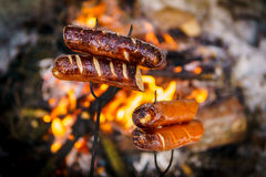 Some sausages roasted on fire. Delicious sausages baked on a campfire in the forest Stock Image