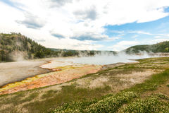 Some scenic view of landscape in geysers area in yellow stone,Wy,usa.  Royalty Free Stock Image