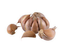 Garlic and some segments on a light background Royalty Free Stock Photo