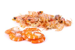Some shelled shrimps and shells. Isolated on the white background stock photos