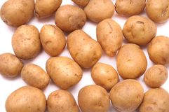 Some small brown yellow potatoes. A photo taken on some small brown yellow potatoes against a white backdrop Stock Photos