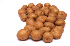 Some small brown yellow potatoes. A photo taken on some small brown yellow potatoes placed at one side of the photo against a white backdrop Royalty Free Stock Images