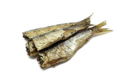 Some smoked sprats in oil. On a white background royalty free stock photography