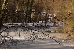 Some snow on the ground around trees - France. Some snow on the ground around trees. He it also some sheets leaves covered with snow. Shooting in the day Royalty Free Stock Photo