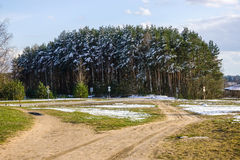 Some snow in spring time. Pilaite, Lithuania Royalty Free Stock Photo