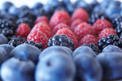 Some sort of. Berries: blueberries, blackberries, raspberries Royalty Free Stock Photography