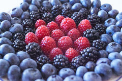 Some sort of. Berries: blueberries, blackberries, raspberries Royalty Free Stock Images