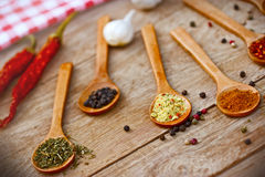 Some spices Stock Images