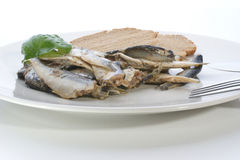 Some sprats and bread on a white plate. Fork and knife royalty free stock images