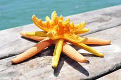 Some starfishes on an old wooden pier on the sea. Some different starfishes on an old wooden pier on the sea stock image