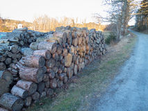 Some stock from the tree that will be firewood. To heat the house Royalty Free Stock Images
