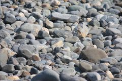 Some stones and rocks on a sandy beach background Stock Photo