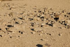 Some stones scattered on the dry ground soil. Lighten by low sun of sunset Royalty Free Stock Photo