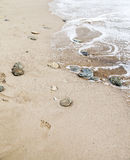 Some stones on the seashore. Some stones on the sand by the seashore stock photos